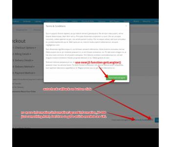 Modal SEO URL SuperFix + Language variables JS loader